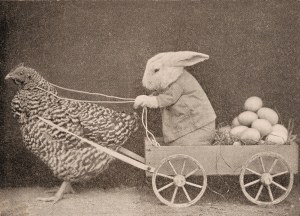 bunny-delivering-eggs-via-chicken_graphics-fairy