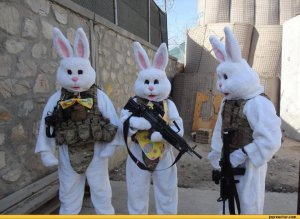 bunny-soldiers