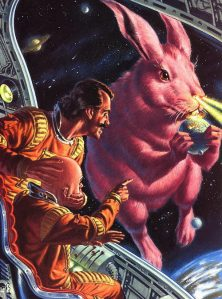 Rabbit space